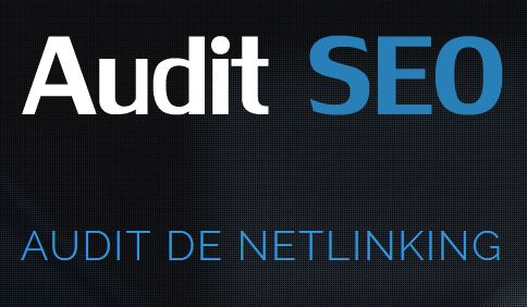 Auditseo.pro analyse la pertinence de votre site en termes de référencement.